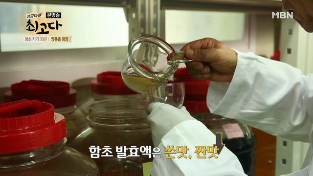 함초 발효액을 ..