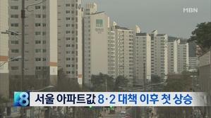 [뉴스8 단신] 서울 아파트값 8·2 대책 이후 첫 상승