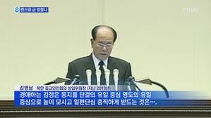 김영남 왜 보냈을까…서열 2위에 외교통
