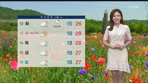내일도 더위 주춤…오후~밤 충청·남부 소나기