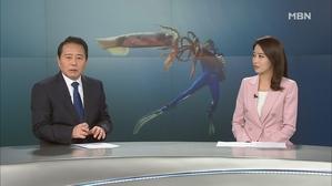 1월 19일 MBN 뉴스8 클로징