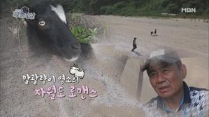 말괄량이 염소의 자월도 로맨스