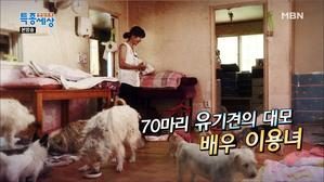 배우 이용녀, 70마리 개를 키우는 이유는?
