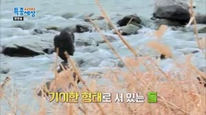 현장르포 특종세상 361회