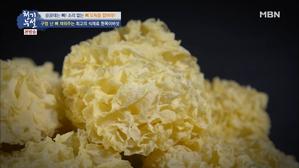 최고의 식재료 흰목이버섯