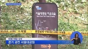 서울대공원 주차장 인근서 ...