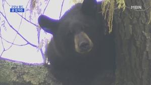 [굿모닝월드 1]곰 섰거라