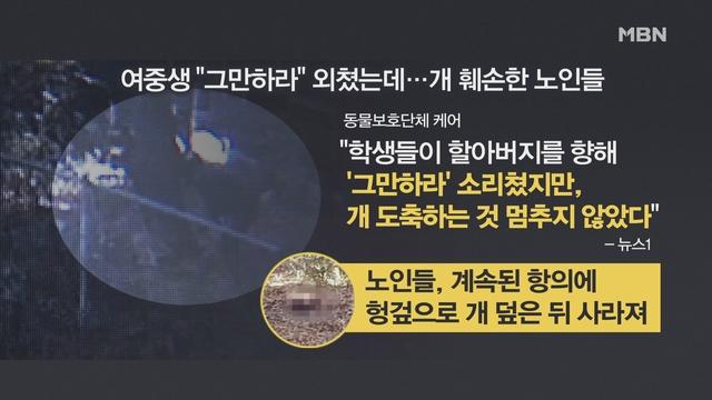 [김은혜의 사회 이슈] 도심서 죽은 개 태우고 훼손…여중생이 '처벌 국민청원'