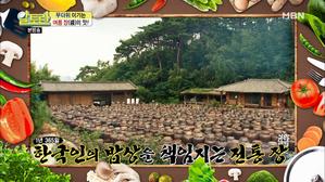 무더위 이기는 '여름 장(醬)'의 맛!