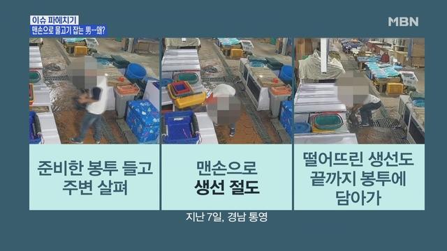 """MBN 뉴스파이터-맨손으로 생선 잡은 절도범 """"환청이 들린다"""""""