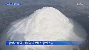 [충남] 솔향기가 솔솔…태안 '송화소금' 생산 한창