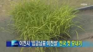 [경기] 이천시 '임금님표 이천쌀' 전국 첫 모내기