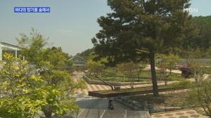 [경기] 바다와 숲을 함께 즐겨요…안산 바다향기수목원 개장