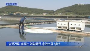 [충남] 천일염과 송홧가루의 조화…명품 '송화소금' 생산