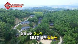 힐링 휴가 명소, 담양!