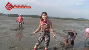 통일소녀 송이! 조개 캐러 가다!