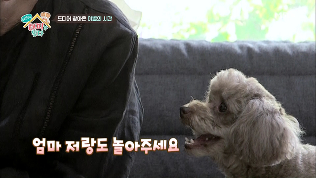 김수미, 희대의..